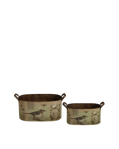 Winward Set of 2 Wild Bird Planters