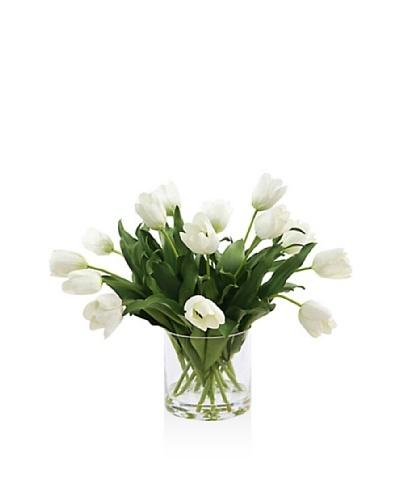 Winward Tulip In Glass [White]