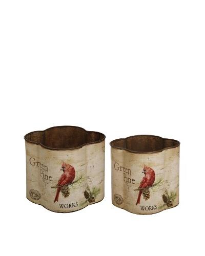 Winward Set of 2 Cardinal Holiday Planters