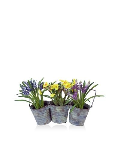 Winward Petite Bulb Pail Planter, Multicolor