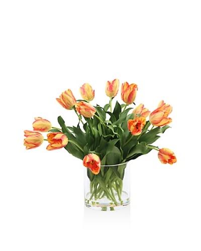 Winward Tulip In Glass