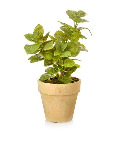 Winward Faux Mint in Pot