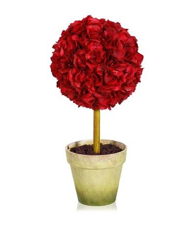 Winward Holiday Hydrangea Topiary
