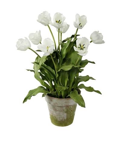 Winward Potted Tulip Bushel