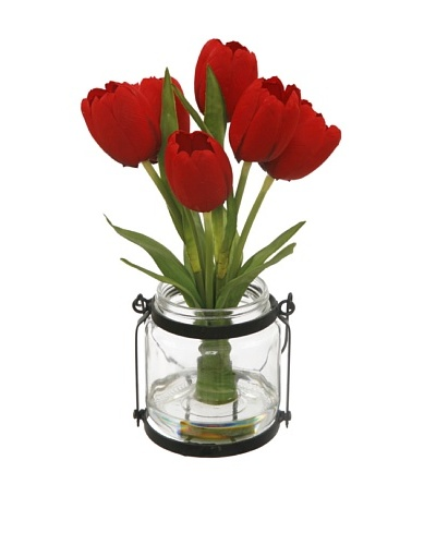 Winward Tulip in Country Jar