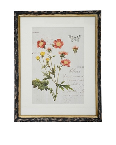 Winward Botanic Print, Orange