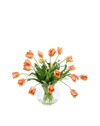 Winward Tulip in Glass, Gold Red