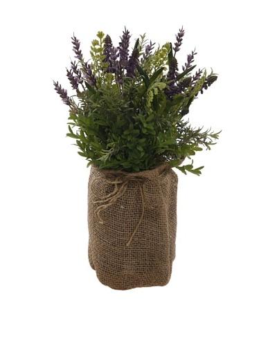 Winward Muscari Lavender In Burlap