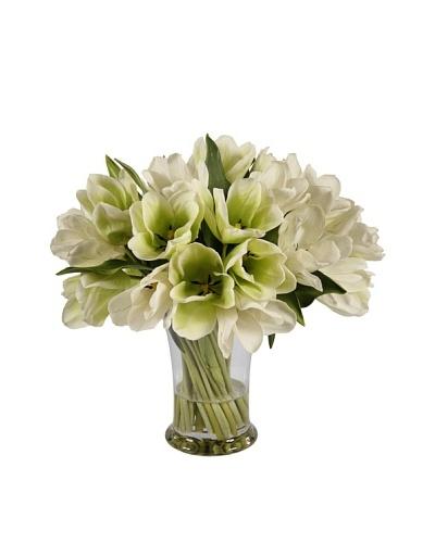 Winward Tulip in Glass Vase
