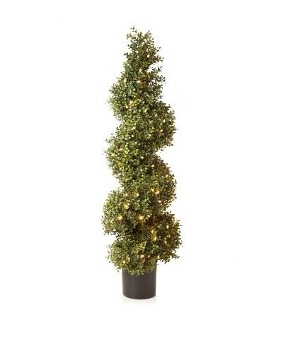 Winward Illuminated Boxwood Spiral Topiary